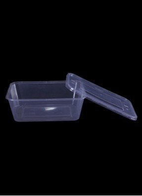 Elite Rectangle container 750-grams pack of 10