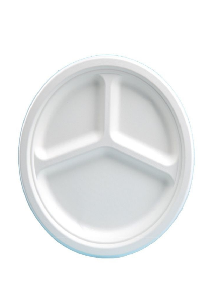 Biodegradable 3 cp round plate 10 inch pack of 10