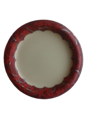 Paper Biodegradable round plate 10 inch pack of 70