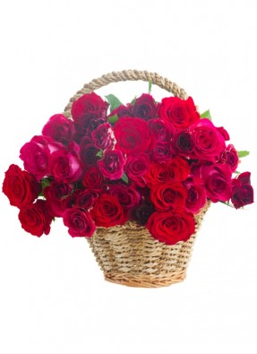 Red Roses Bucket